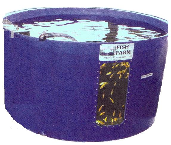 Startup for Aquaculture fish tanks