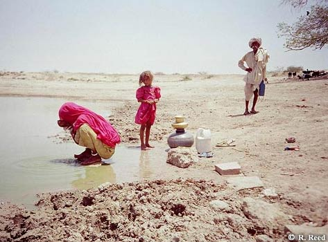 Aln no 57 reed fig 3 traditional approach to drinking surface water in rajasthan - Household water treatment a traditional approach ...
