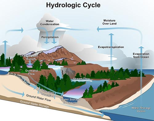 the hydrological cycle The hydrologic cycle is a conceptual model that describes the fluxes of water between the oceans, surface water bodies (lakes, rivers, and streams), groundwater in.